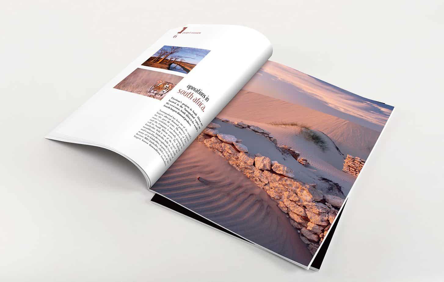 Graphiclagoon Annual_report2 Graphic Design
